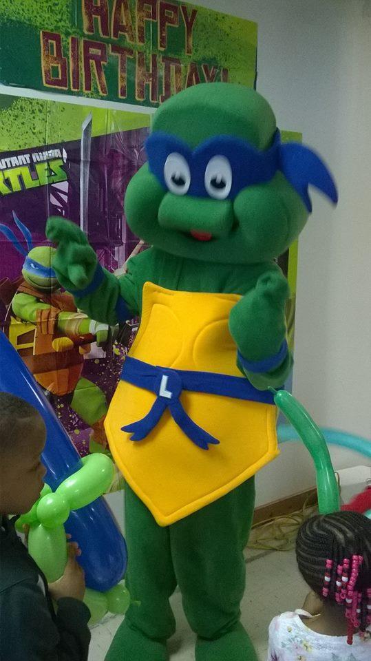 Ninja Turtle Costume Character