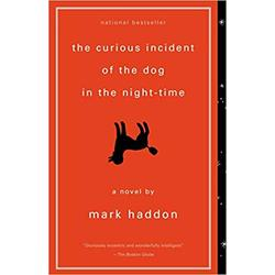 NEW || HADDON / CURIOUS INCIDENT OF THE DOG IN THE NIGHT-TIME