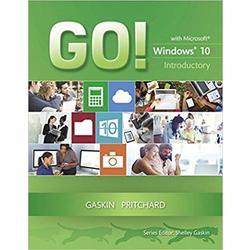 USED || GASKIN / GO WINDOWS 10 INTRO