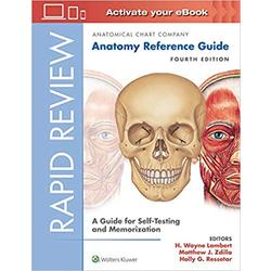 NEW || RAPID REVIEW / ANATOMY REFERENCE GUIDE 4th