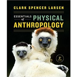 USED || LARSEN / ESSENTIALS OF PHYSICAL ANTHR (PAPER BOUND)