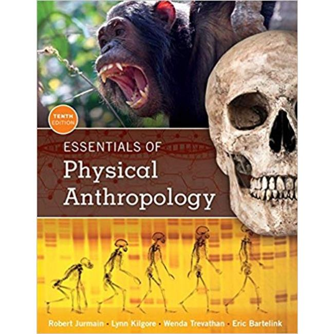 USED || JURMAIN / ESSENT OF PHYS ANTHRO 10TH PA