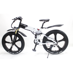 Sky Eco - Foldable Electric Bike - Adult
