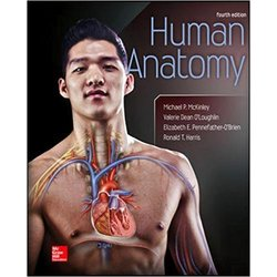 USED || MCKINLEY / HUMAN ANATOMY 4TH EDITION HARDBACK