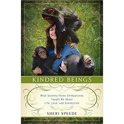 NEW || SPEEDE / KINDRED BEINGS