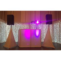 Wedding Package DJ 4 hour $550