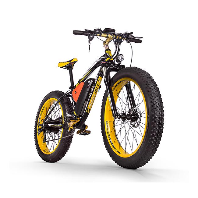 Adult E-bike