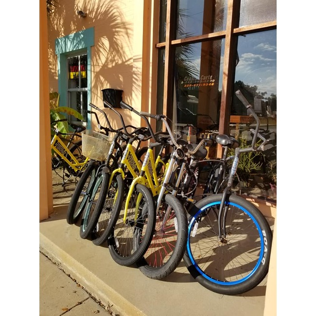 Beach Cruiser Adult Bicycles