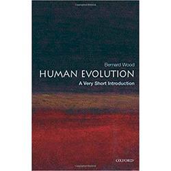 USED || WOOD / HUMAN EVOLUTION