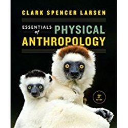 Used| LARSEN / ESSENTIALS OF PHYSICAL ANTHROPOLOGY (LOOSE-LEAF)| Instructor: MAGGINETTI
