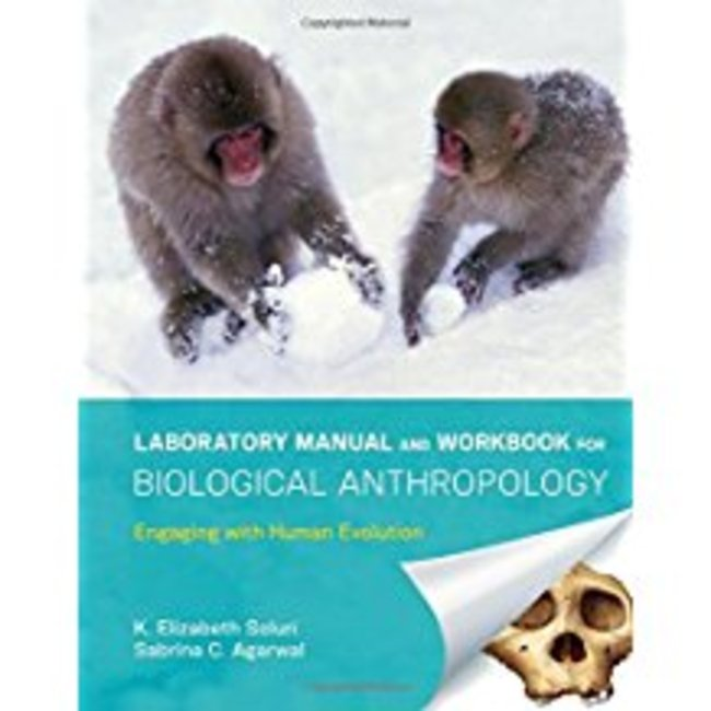 Used| SOLURI / LAB MANUAL & WKBK FOR BIOLOGICAL ANTHROPOLOGY| Instructor: MAGGINETTI