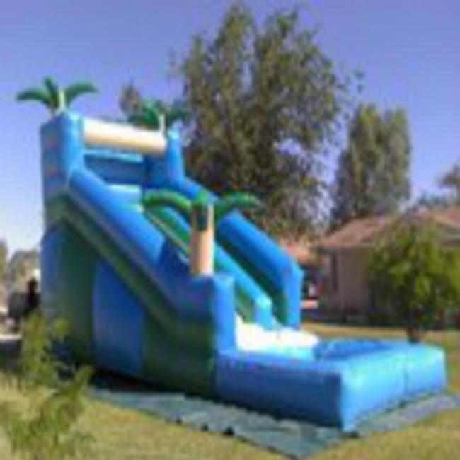 Wet Tropical Slide