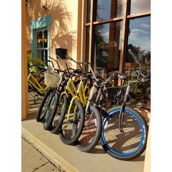 Beach Cruiser Adult Bicycles