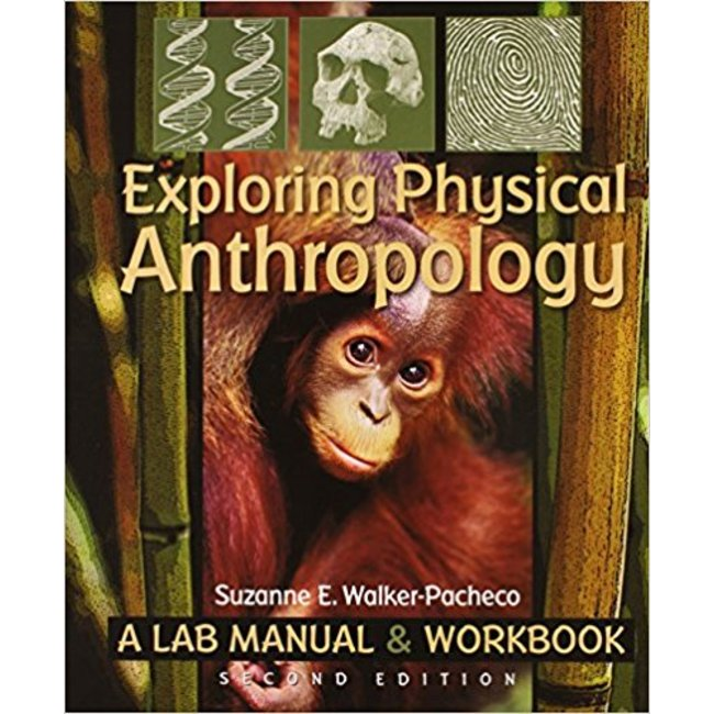 Used| WALKER-PACHECO / EXPLORING PHYSICAL ANTHROPOLOGY: LAB MAN & WKBK| Instructor: GARCIA