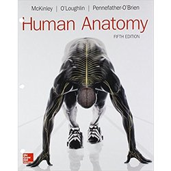 NEW || MCKINLEY / HUMAN ANATOMY 5TH ED (LOOSE-LEAF)