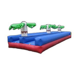 Tropical Dual Lane Slip n Slide