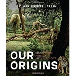 Used| LARSEN / OUR ORIGINS 3rd | Instructor: WONG