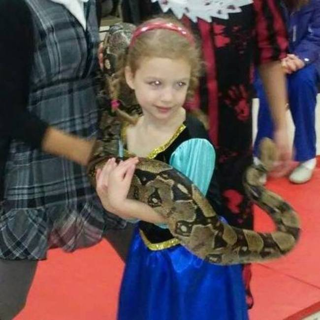 pet show & diego