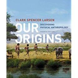 Used| LARSEN / OUR ORIGINS 4th