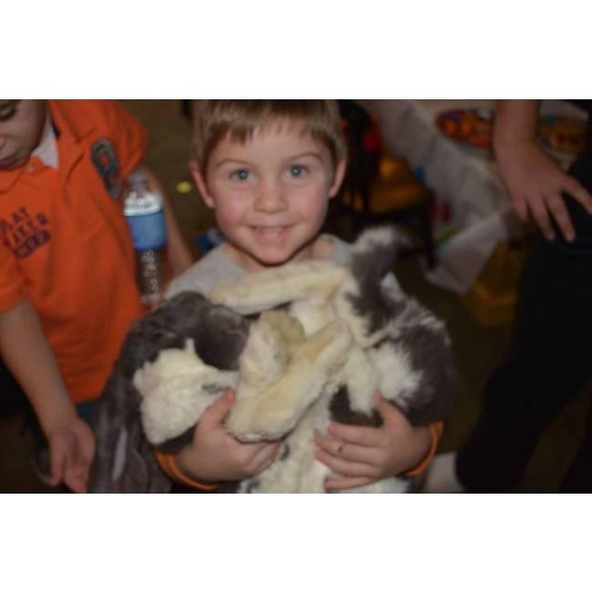 pet show deal