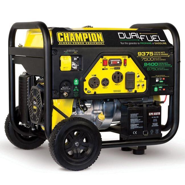 Generator 220v 8000 watt dual fuel